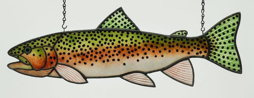Rainbow 22 inch.JPG