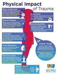 Physical Impact of Trauma (Echo Training