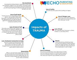 Impacts of Trauma (Echo Training).PNG