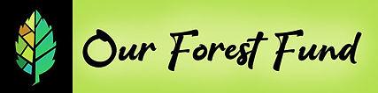 leaftree4-logo_opt.jpg