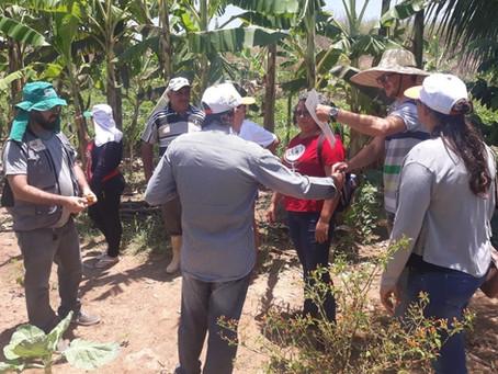Famílias de São Miguel recebem visita com vistas à certificação orgânica