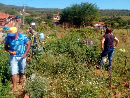 """Em dia de """"Saberes e Sabores"""" famílias discutem segurança e soberania alimentar"""