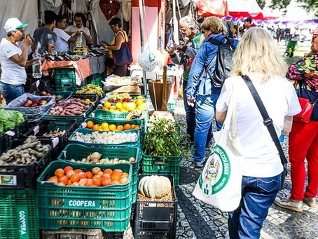 18ª Jornada de Agroecologia conquista diálogo entre campo e cidade