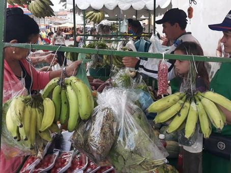 Pesquisa analisa a importância de alimentos agroecológicos na alimentação escolar