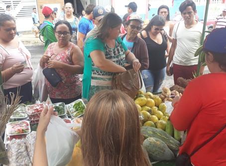 Governo estadual regulamenta Programa de compras de alimentos da Agricultura Familiar