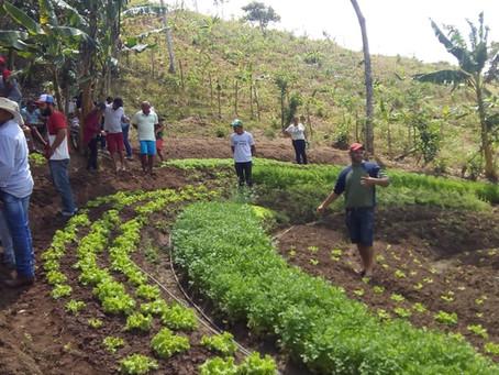 Famílias potiguares conhecem sistemas de produção agroecológica