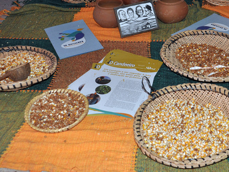 Estados do Semiárido discutem preservação das sementes crioulas
