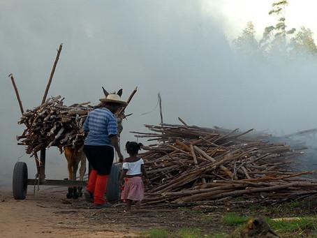 PEC de Bolsonaro é o fim da Previdência rural para muitas famílias