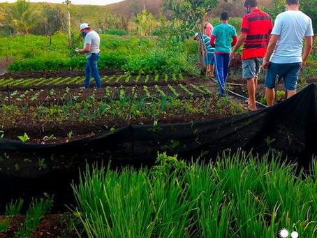Agricultores Familiares recebem Certificação de Produção Agroecológica, em São Miguel/RN