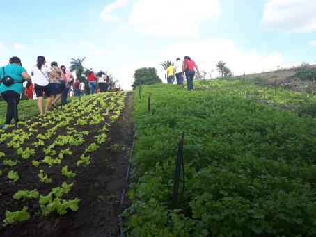 Famílias de Serra Caiada conhecem produção agroecológica no brejo paraibano