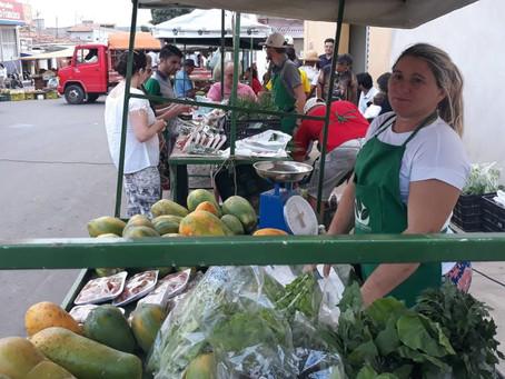 Famílias agricultoras micaelenses comemoram um ano da Feira Agroecológica