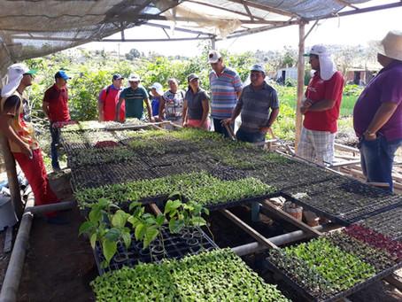 Agricultores de São Miguel vivem dia de troca de experiências e saberes