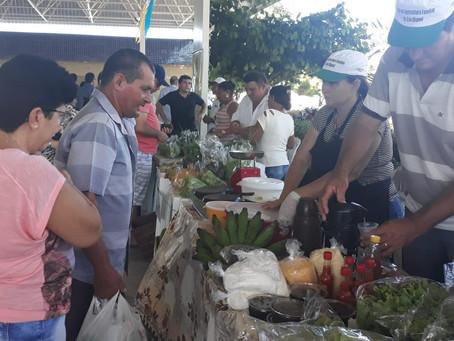 """Feira Agroecológica de Pau dos Ferros """"foi nota 10"""""""
