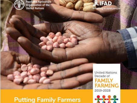ONU propõe uma década dedicada à Agricultura Familiar no mundo