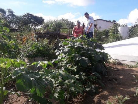 Seapac define famílias que serão acompanhadas em Lajes Pintadas