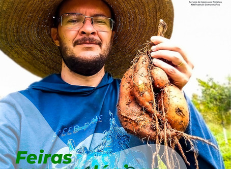 "Feira agroecológica ""virtual"" apresenta desempenho surpreendente no Alto Oeste Potiguar"