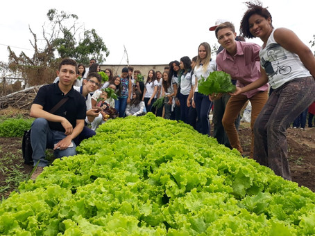 Alunos conhecem quintais que produzem alimentos agroecológicos