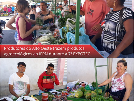 Produtores orgânicos expõem produtos na EXPOTEC do IFRN de Pau dos Ferros
