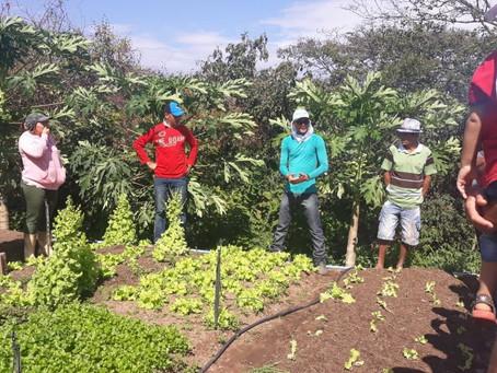 Famílias do Alto Oeste realizam dia de partilha de saberes em Agroecologia