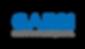 logo_gaesi_2013.png