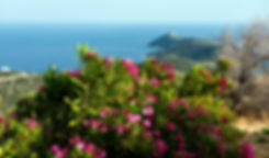 Dikastika Sea view