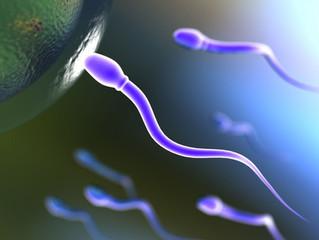 Você está planejando ter um filho? Então é hora de checar sua fertilidade.