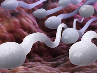 Se o espermograma estiver alterado, o homem é infértil?