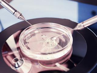 FIV aumenta o risco de câncer?