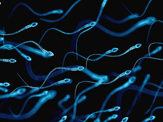 Como aumentar a fertilidade masculina