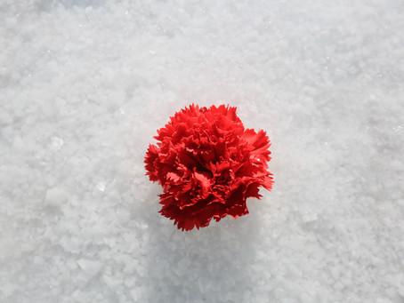 ウユニ塩湖ウェディングフォトno.4