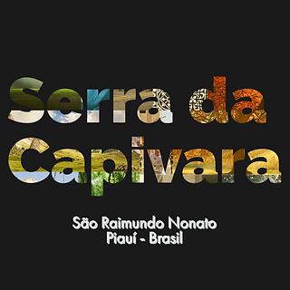 Capivara_3 Copy3.png