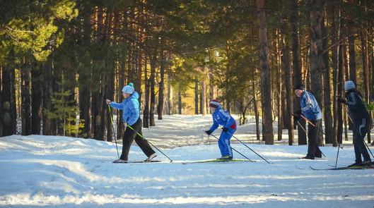 skidor kloten