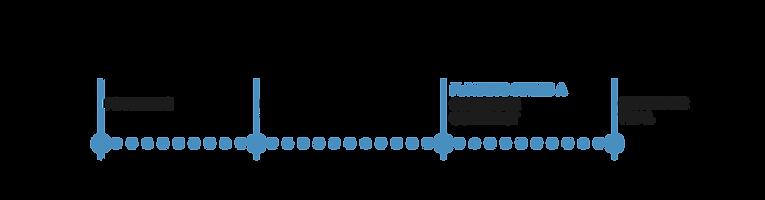 CompMilestones_Timeline-v4.png