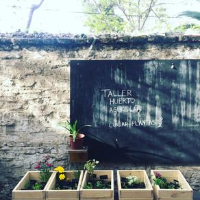 Taller de Jardines Comestibles - Aguas Lab