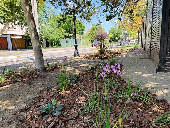 Ante jardin El espino