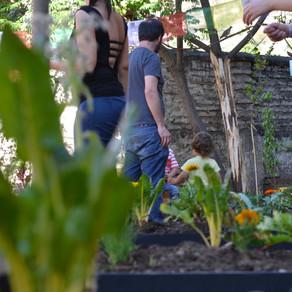 Taller Diseña tu Jardín Comestible