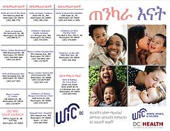 Brochure Amharic Side 1.PNG