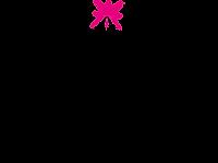peakmistique-logo.png