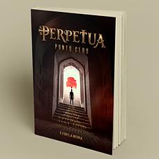 Perpetua_Simu01_edited_edited.png