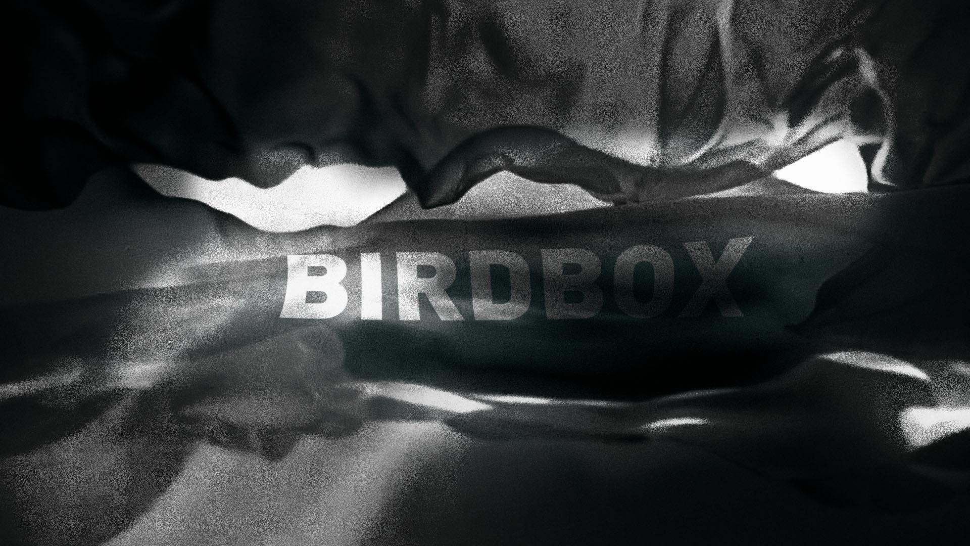 BRD_06ns
