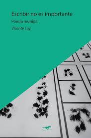 Escribir no es importante - Vicente Luy