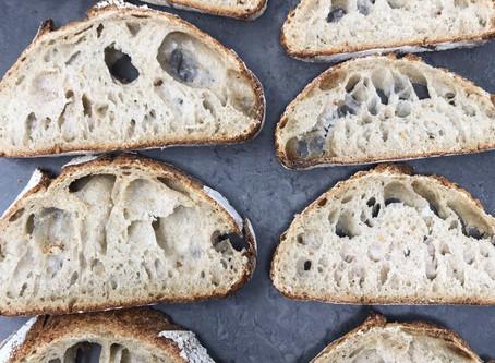 Blame Bad Bread, Not Gluten