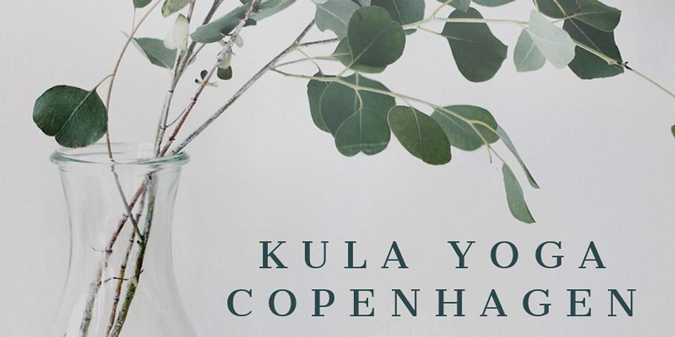 Grand Opening Class with Kula Yoga Copenhagen