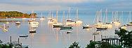 quissett harbor 2.jpg