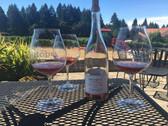 Oregon Wine Country 1