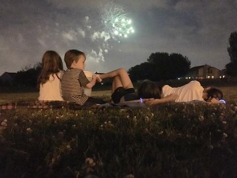 Firework Wonder