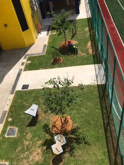 Musical Garden top view