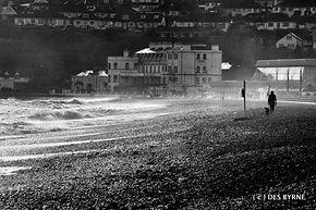 Dog Walker Bray Seafront.jpg