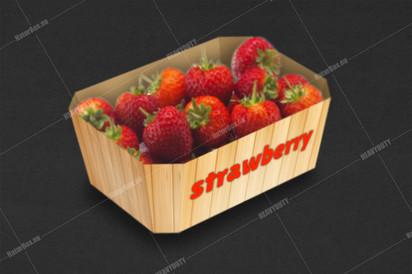Strawberry trays.jpg