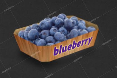 Blueberry tray.jpg
